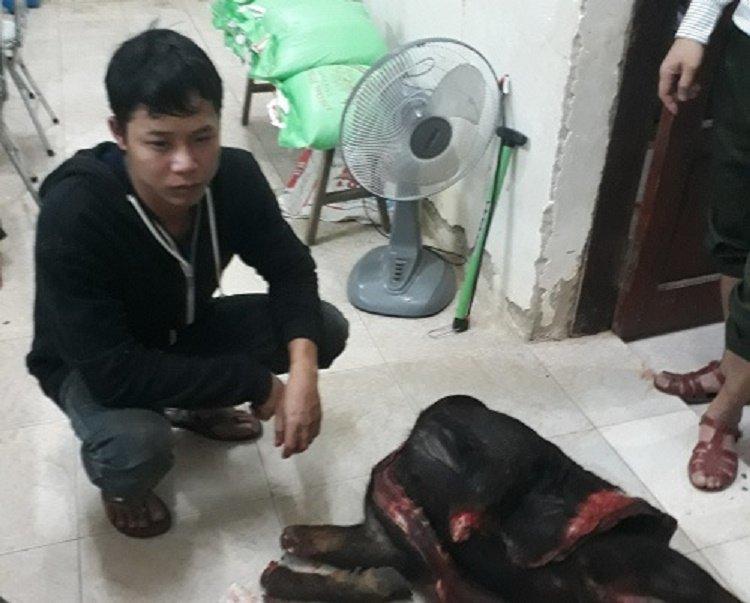 Bat 2 ke ngang nhien lam thit son duong trong rung Phong Nha - Ke Bang hinh anh 1