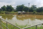 Xâm nhập mặn gay gắt, Đà Nẵng 'cầu cứu' các hồ thủy điện
