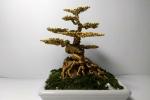 Nam sinh có 'bàn tay vàng' kiếm bạc triệu mỗi ngày bằng nghề làm cây bonsai từ dây đồng dịp Tết