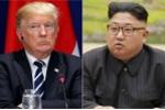Ông Trump sẽ gặp ông Kim Jong-un trong tháng tới?