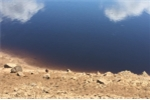 Khu công nghiệp xả thải 'bức tử' dòng sông Ô Lâu khiến lúa không thể trổ bông
