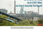 Su hoang tan ben trong du an 8.100 ti dong cua Cong ty Gang thep Thai Nguyen hinh anh 1