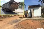 Bắt khẩn cấp hạt trưởng kiểm lâm tiếp tay cho trùm gỗ lậu Phượng 'râu'