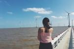 Cánh đồng quạt gió đẹp như thiên đường không thua kém nước ngoài ngay tại Việt Nam