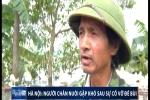 Video: Sau 2 tuần vỡ đê Bùi, dân vẫn vật lộn sống chung với nước lũ