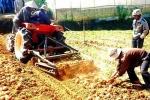 Máy đào khoai tây 'made in Da Lat'
