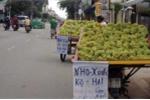 'Truy tìm' những loại trái cây Trung Quốc đội lốt hàng Việt