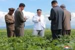 Anh: Ong Kim Jong-un tich cuc thi sat nhieu noi phia Dong bac Trieu Tien hinh anh 3