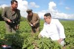 Anh: Ong Kim Jong-un tich cuc thi sat nhieu noi phia Dong bac Trieu Tien hinh anh 4