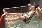 Cười vỡ bụng biểu cảm của nữ ca sỹ hát và hét dưới bể nước đầy sinh vật kỳ dị