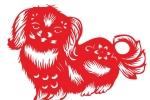 Năm Tuất nói chuyện chó trong thành ngữ tiếng Việt