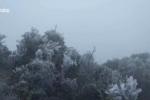 Video: Cận cảnh băng tuyết phủ trắng Mẫu Sơn, Lạng Sơn