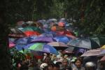 Video: Hàng vạn người đội mưa đi khai hội, Đền Hùng đông nghẹt thở