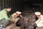 Bắt giữ xe container chở gần 20m3 gỗ lậu ở Nghệ An