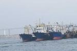 Đại gia vay nghìn tỷ mua tàu cá nát: Xin ưu đãi quá đà?