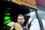 Quán cà phê toàn rắn và kỳ đà ở Hà Nội