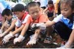 Loạn giáo án dạy kỹ năng sống cho trẻ