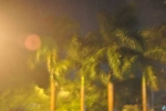 'Thần Sấm' đổ bộ Móng Cái: Gió rít mạnh, cây cối ngả nghiêng