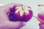 Clip: Mách chị em cách tỉa trái cây đơn giản mà đẹp tuyệt
