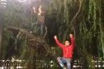 Clip: Nam thanh niên 'vắt vẻo' trên cây hò hét, nhảy múa náo loạn đêm giao thừa