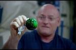 Video: Thí nghiệm tạo bong bóng nước rực rỡ kỳ ảo ngoài không gian