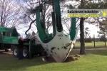 Clip: Kinh ngạc công nghệ di chuyển cây xanh cao lớn ở Hà Lan