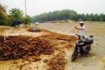 Thương lái Trung Quốc ồ ạt lên Tây Nguyên mua thảo dược quý với giá bằng mớ rau