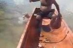 Clip: Phát khiếp cảnh câu cá ăn thịt người piranha