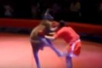 Clip: 'Võ sĩ' Kangaroo áp đảo đối thủ trên sàn boxing