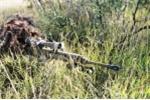 'Đột nhập' trường đào tạo lính bắn tỉa Mỹ