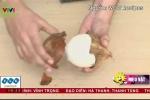 Video: 'Bí kíp' tách vỏ dừa khô chỉ trong 30 giây