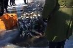 Clip: Xem ngư dân giăng lưới bắt mẻ cá khổng lồ từ dòng sông băng