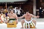 Cận cảnh nghi lễ chào năm mới của những võ sĩ sumo