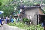 Hà Nội: Cây to đổ gây chập điện cháy nhà dân