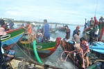 Ảnh: Đổ xô 'hôi của' trên tàu đắm ở Quảng Ngãi