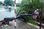 Bão chưa đổ bộ, miền Trung đã ngập lụt, 1 người chết