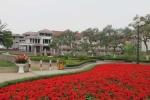 Mua nhà như thế nào cho đúng đắn: GS Đặng Hùng Võ đưa lời khuyên