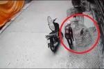 Clip: Trộm gà chọi nhét vào… cốp xe máy