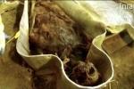 Video: Khai quật xác ướp 'quý bà' 350 năm tuổi ở Pháp