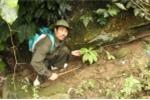 Kỳ lạ ông lang 20 năm trồng sâm trên núi Hoàng Liên Sơn