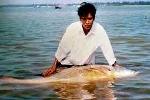 Người tóm 700 con cá sủ vàng bạc tỉ ở Biển Đông