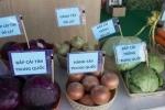 Video: Cách phân biệt rau củ Đà Lạt với Trung Quốc