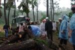 Vác dao rựa, thả chó ngăn lực lượng chức năng thu gỗ phá rừng đặc dụng