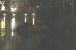 Video: Đưa xác 'cụ rùa' Hồ Gươm vào đền Ngọc Sơn trong đêm