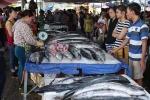 Mục kích chợ hải sản 'giãy đành đạch' Cửa Lò