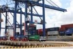 Cảng Tân Cảng - Hiệp Phước chính thức vận hành