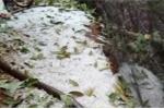 Mưa đá ồ ạt trút xuống Đắk Lắk, nông dân trắng tay