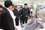 5 người ăn nấm gặp họa, Bộ Y tế cảnh báo