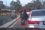 Clip: Nữ tài xế hốt hoảng nhảy ra khỏi xe đang chạy