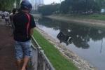 Ô tô lao xuống sông Tô Lịch, tài xế tử vong